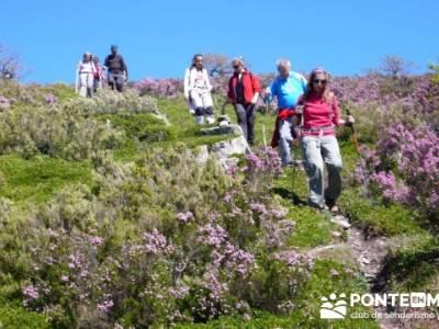 Senderismo Segovia - Macizo de la Buitrera; rutas de senderismo comunidad de madrid